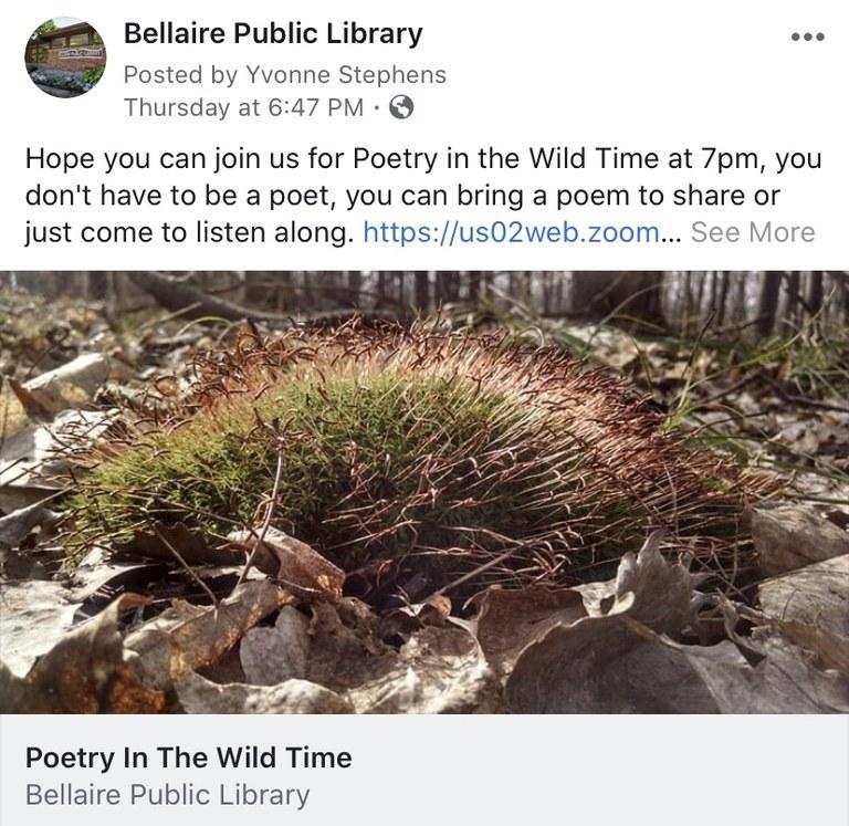 Facebook poetry