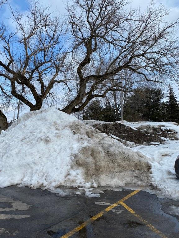 snow pile 2020